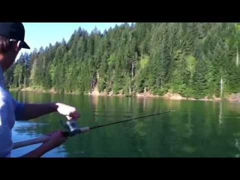 Kokanee Fishing At Green Peter Reservoir 51312
