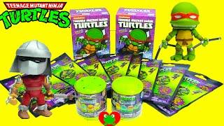 Teenage Mutant Ninja Turtles Action Vinyls, Dog Tags, And Mashems