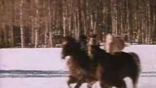 Zawadiaki Wild rovers