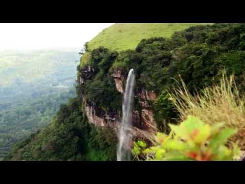 THE UNSUNG - A Life at bhadra Tiger Reserve HD 1080p