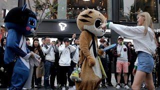 160410 오마이걸 신촌 게릴라 홍보 : 댄스 배틀!