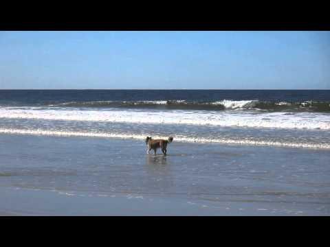 Beach - Playa Grande - Punta del Diablo - Uruguay