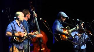 ed helms from the office playing bluegrass at bonnaroo