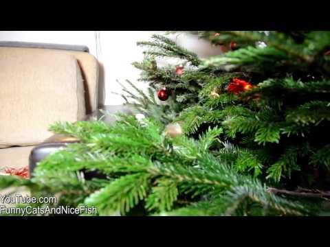 Елка из перчаток - HD видеохостинг Киносток