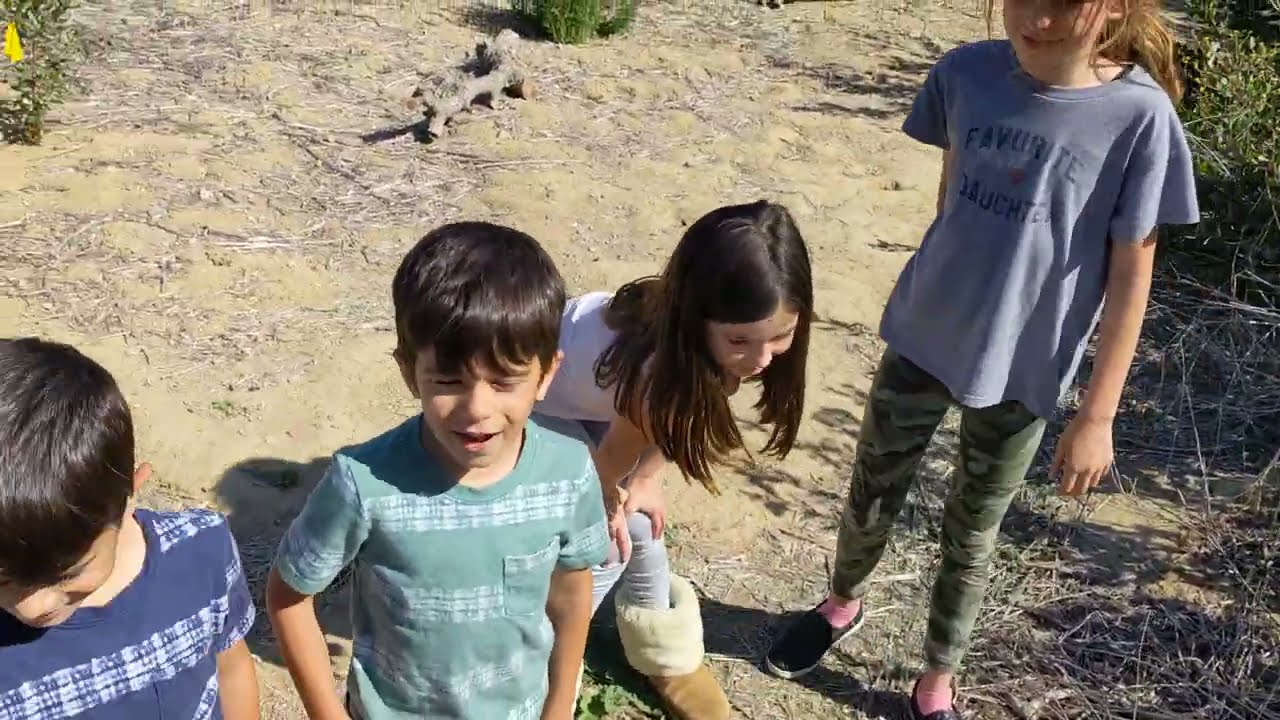 Releasing a gopher snake in Tecolote Canyon
