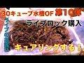 【海水魚水槽】DIY!30キューブ水槽 ライブロック購入キュアリング!