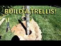 How To Build a High Cordon Grape Trellis ― Setting the End Posts