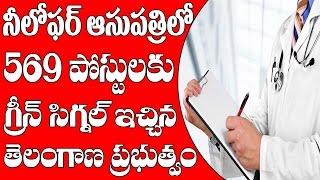 TSPSC Govt Jobs 2017 || Telangana Niloufer Hospital Recruitment 569 Vacancies || Metro TV Telugu