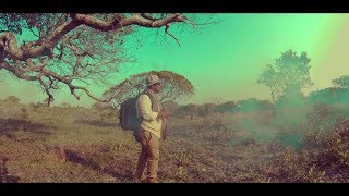 CAMBEZO NDINAENDA KUPI OFFICIAL VIDEO