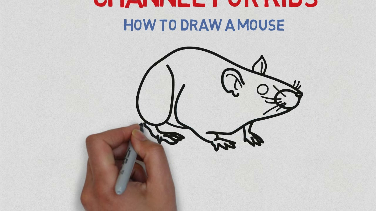 How to draw a MOUSE _ Hướng dẫn vẽ Con Chuột cho bé _ Channel for Kids