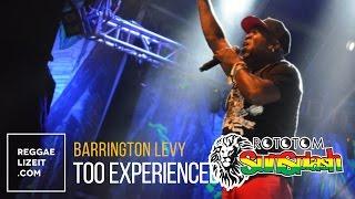 Barrington Levy - Too Experienced @ Rototom Sunsplash 2015
