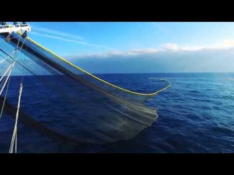 Murueta Shipyards - Tuna Purse Seiners / Atuneros