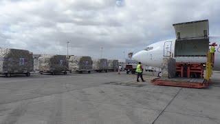 Llega a Canarias un avión con 63.250 test