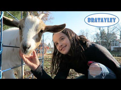 Annie's Backyard Birthday | Traveling Petting Zoo (WK 257.5) | Bratayley