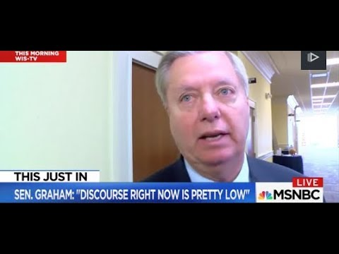 Lindsey Graham Slams Trump On MLK Day    Discourse Is Pretty Low MSNBC
