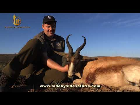 Springbok Hunting With Side By Side Safaris (Part 1)