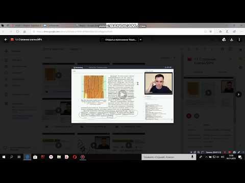 Почему не открывается видео на Гугл Диске