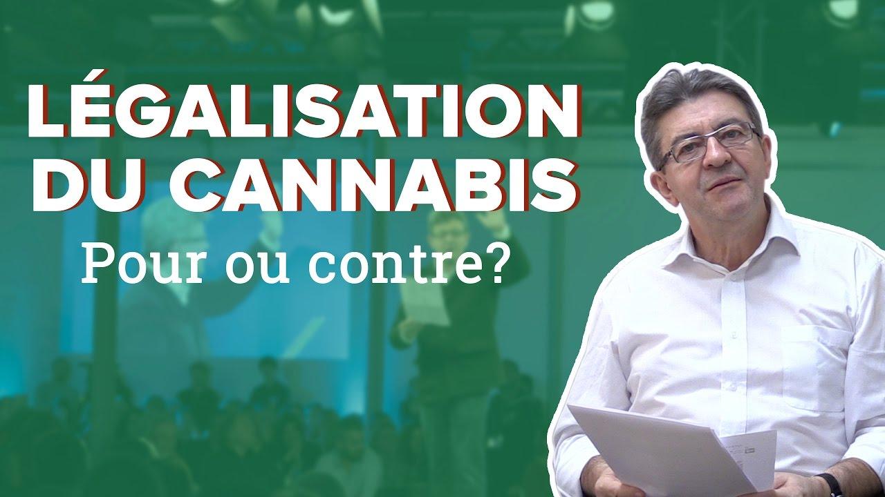 LÉGALISATION DU CANNABIS : POUR OU CONTRE ?
