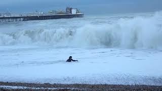 愛犬を救うため、命がけで海に飛び込んだ女性の行動が話題に