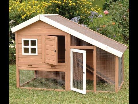 stan-sullivan---diy:-small-backyard-chicken-coop-part-1---stan-sullivan