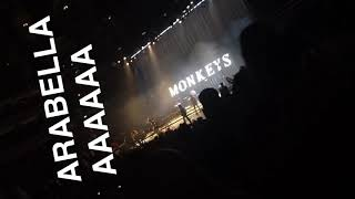 Baixar Alex Turner caught woman's tights mid-song whilst singing Arabella.. then misses Jamie by a metre