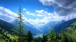 Morning Relaxing Music - Piano Music & Guitar Music with Birds Singing for Stress Relief (Kate)
