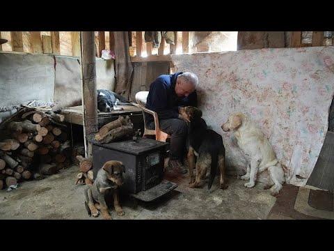 مئات الكلاب تجد الدفء والرعاية في كنف مزارع لبناني  - نشر قبل 4 ساعة
