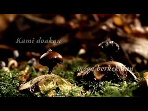 Kompang Dipalu ( Lirik ) - Waheeda dan Izam Eye
