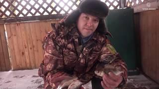 Рыбалка Птичь