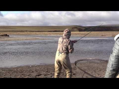Chris's Pending Worl Record 30b Sea Run Brown Trout, Rio Grande, Argentina