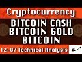 12-07 BITCOIN CASH : BITCOIN GOLD : BITCOIN Update CryptoCurrency Technical Analysis Chart