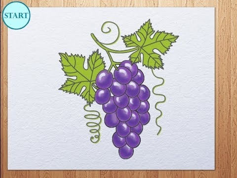How To Draw Grape