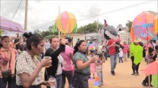 Convite en san pablo huixtepec 2014