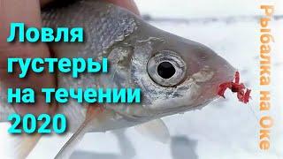 Чуть не утащил удочку Ловля густеры на реке Ока зимой Рыбалка на течении на реке 2020 Ока