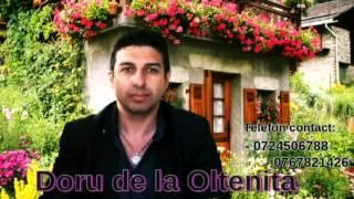 Doru de la Oltenita - La casa cu poarta verde (cover)