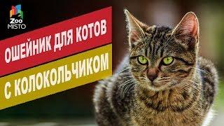 Ошейник для кошек с колокольчиком | Обзор ошейник для кошек с колокольчиком