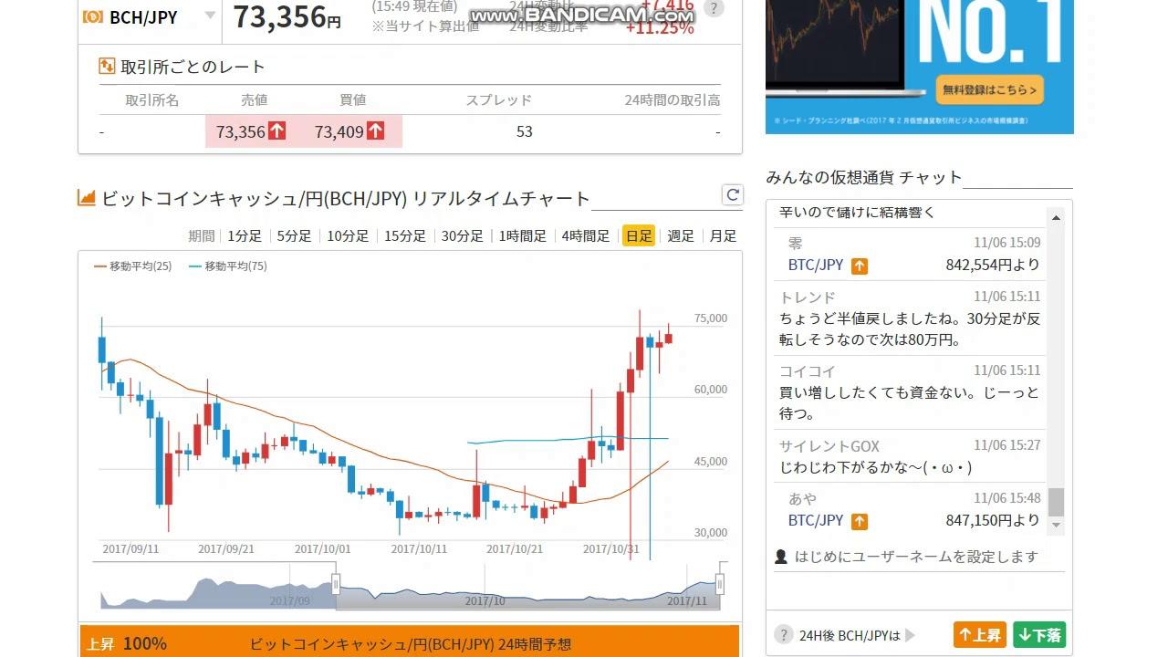 仮想通貨バブル 転機 ビットコイン 1日で29 下落 乱高下に安全網なく
