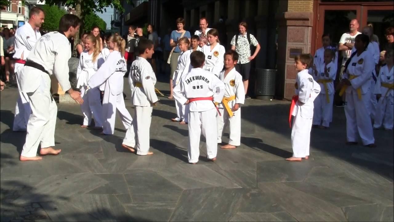 karate herning