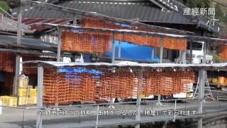 和歌山県かつらぎ町の四郷地区では、正月の縁起物「串柿」づくりが進む...