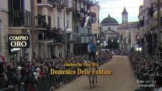 """Palo del Colle: Domenico Delle Fontane vince il """"Palio del Viccio 2014"""""""