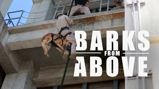 Barks From Above: Fast-roping Military Dogs