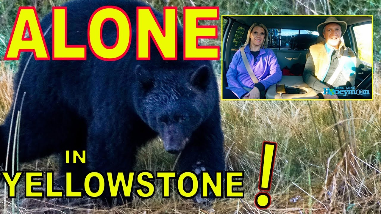 how-to-have-yellowstone-all-to-yourself-almost