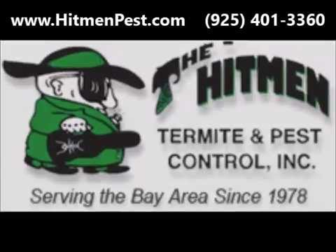 Pleasanton termite control orange oil termite company in pleasanton termite control orange oil termite company in pleasanton hitmen termite solutioingenieria Gallery