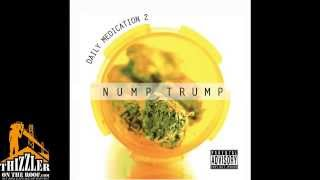 Nump Trump  ft. Cousin Fik, Ezale, Droop-E, Rollin Beatz - Share No Blunts [Prod. By Rollin Beatz] [