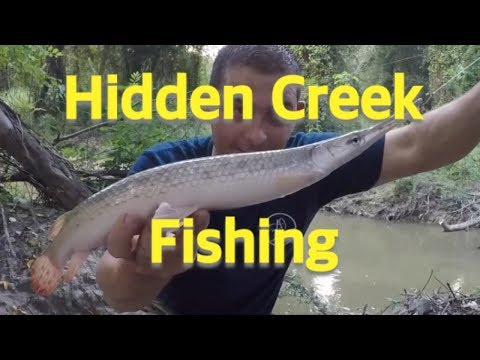 Roadside Creek Fishing - Freshwater Fishing Houston Texas