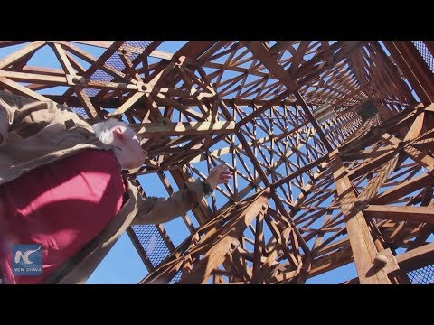 Artist Builds Eiffel Tower's 'Little Brother' in Argentina