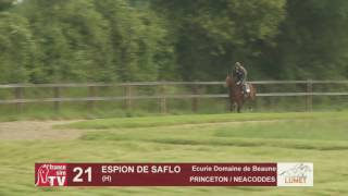 Show Lumet 2016 - Lot 21: Espion de Saflo
