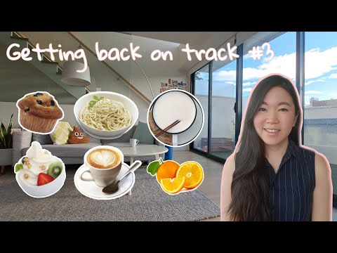 getting-back-on-track-3-|-what-i-ate-in-a-day-|-5-feet-tall-|-1200-calorie-weight-loss-meal-plan