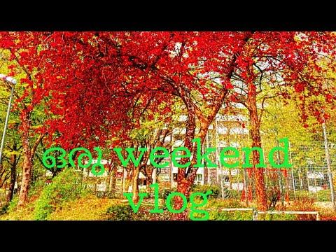 ഒരു weekend vlog/A beautiful place in Germany /Travel vlog