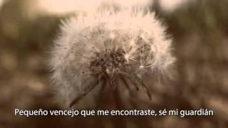 Sufjan Stevens - Death with Dignity (subtitulos español)